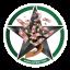 Cedibet Logo